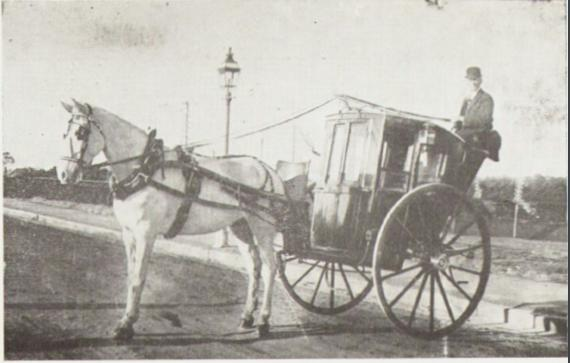 Horse, cabman and cab